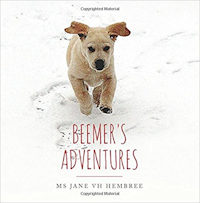 Beemer's Adventures by Jane Hembree